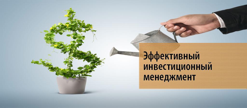 15 Эффективный инвестиционный менеджмент