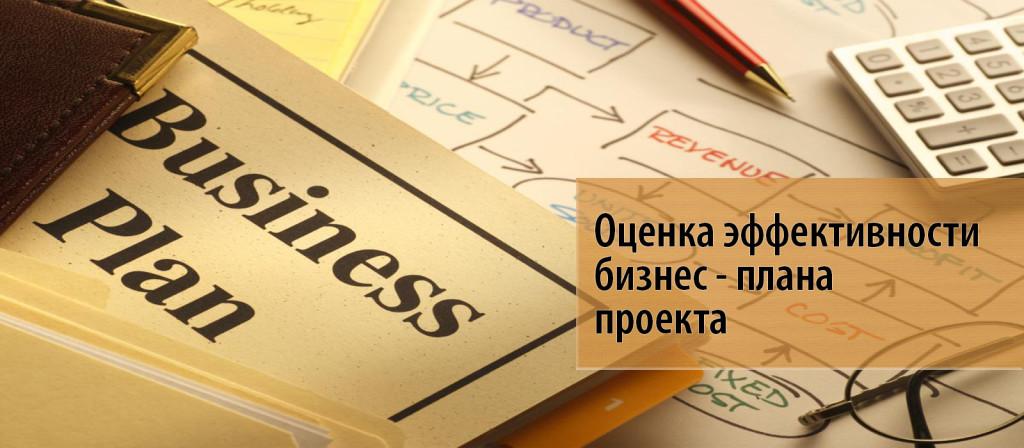 1 Оценка эффективности бизнес - плана инвестиционного проекта